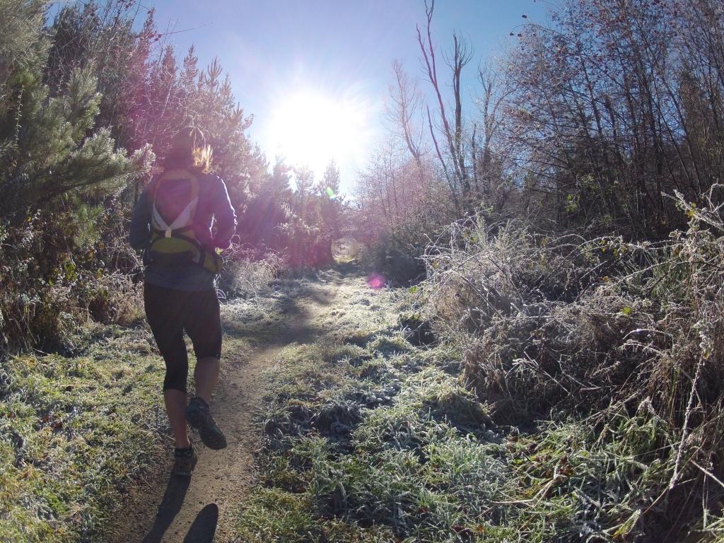 Frozen morning in Hanmer