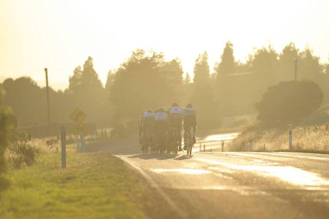 Early morning in the bunch