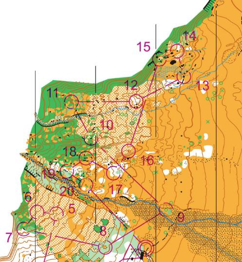 Matukituki my new favorite/hometown orienteering map!