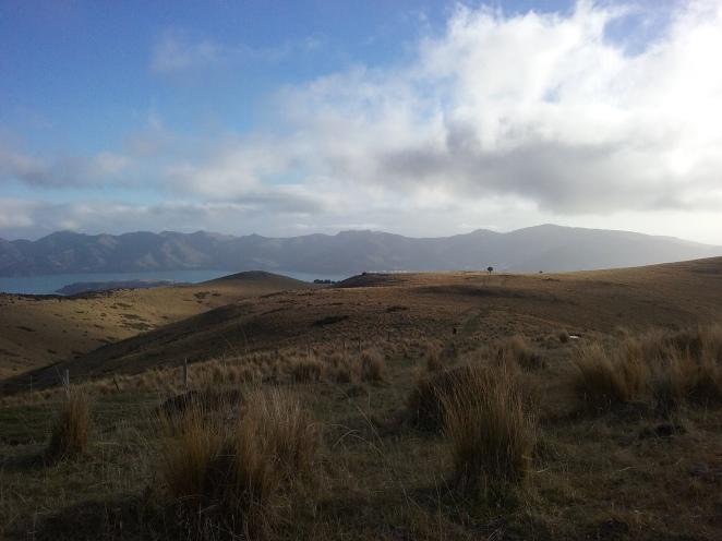 Making our way up Mt Herbert
