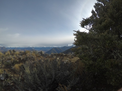 Looking up towards Arthurs Pass